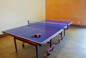 Table Tennis Lavasa Resorts